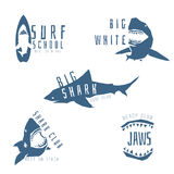 Shark vector logo concept for surf or beach club. Shark logo concept for surf or beach club, isolated on white background. Vector illustration Stock Images