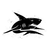 Shark. Vintage illustration of a black shark Royalty Free Stock Images