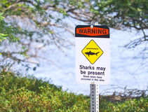 Shark Warning Sign. Posted on a beach Stock Photography