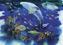 Shark watercolor painting illustration Royalty Free Stock Photo