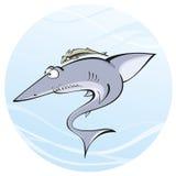 Shark whith remora Royalty Free Stock Photos