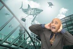 Shark world Royalty Free Stock Photography