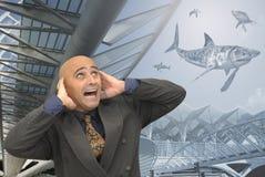 Shark world Royalty Free Stock Photos