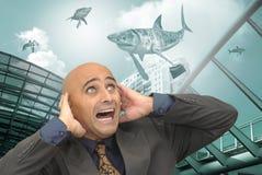 Shark world Royalty Free Stock Image