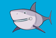Shark zipped. Reliable zipper applied to fasten the mouth of a shark Royalty Free Stock Photo