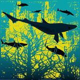 Sharks!. Background illustration with a school of sharks hunting through underwater vegitation Royalty Free Stock Photo