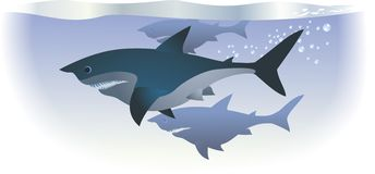 Sharks. Are swimming in deep water royalty free illustration