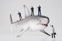 Sharks in business. Business figurines placed with a shark figurine Stock Image