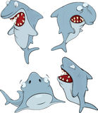 Sharks. Cartoon Stock Images
