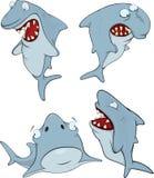 Sharks. Cartoon Stock Images