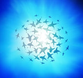 Sharks circling from above Royalty Free Stock Photography