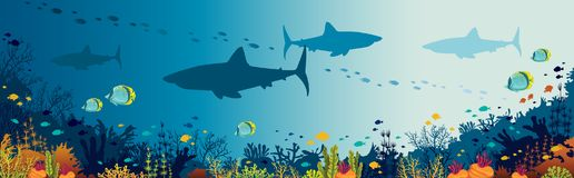 Sharks, coral reef, underwater sea and fishes. Silhouette of big sharks, beautiful coral reef and tropical fishes in a blue sea background. Vector panoramic Royalty Free Stock Photos