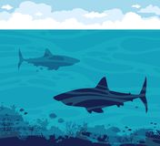 Sharks, coral, sea, sky. Silhouette of sharks, coral reef with fish on a blue sea and cloudy sky. Vector ocean illustration Stock Photography