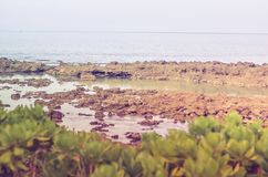 Sharks Cove, Oahu HI Royalty Free Stock Photography