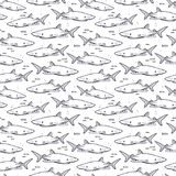 Sharks. Hand drawn seamless pattern Royalty Free Stock Photo