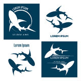 Sharks logo Royalty Free Stock Images