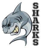 Sharks Mascot. An illustration of a cartoon shark sports team mascot with the text Sharks Stock Photography