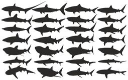 Sharks. Set of silhouettes of sharks Stock Photography
