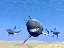 Sharks underwater - 3D render Stock Photography