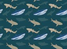 Sharks Wallpaper 1 Stock Image