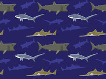 Sharks Wallpaper 5 Stock Images