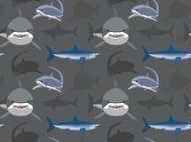 Sharks Wallpaper 12 Royalty Free Stock Photo