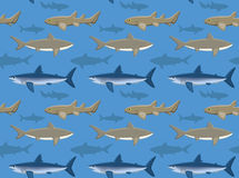 Sharks Wallpaper 2 Royalty Free Stock Image