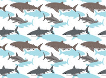 Sharks Wallpaper 3 Royalty Free Stock Images