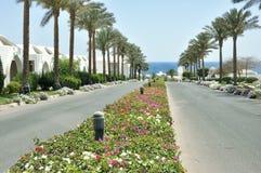 Sharm El谢赫度假区  免版税库存照片