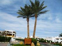 Sharm el Sheikh är den bästa tidsfördrivet royaltyfri bild