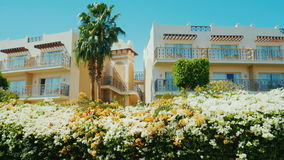 Sharm El Sheikh, Египет, март 2017: Здание курорта, на переднем плане lushly цветя кустов, ладоней A сток-видео