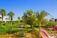 Sharm El Sheikh Egipt, Wrzesień, - 26, 2017: Budynki i terenu Montera Carlo kurortu Hotelowy sharm el sheikh Obrazy Stock