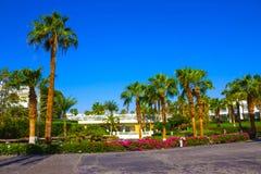 Sharm El Sheikh Egipt, Wrzesień, - 26, 2017: Budynki i terenu Montera Carlo kurortu Hotelowy sharm el sheikh Zdjęcia Stock