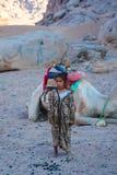 SHARM EL SHEIKH, EGIPTO - 9 DE JULHO DE 2009 a menina está no camelo do deserto no fundo Imagens de Stock Royalty Free