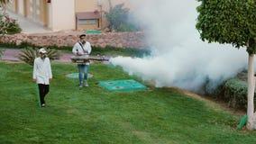 Sharm el Sheikh, Egitto, marzo 2017: Fumigazione del giardino Distruzione dei parassiti e degli insetti nocivi nell'hotel archivi video