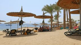 People at the beach lying under the beach umbrella. Sharm-El-Sheikh, Egypt - August 27, 2017: People are having fun at the beach lying under the beach umbrellas stock video