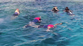Sharm el-Sheikh, Egypt - December 6, 2016: divers in aqualung prepare to dive and snorkelling on the seabed. Sharm el-Sheikh, Egypt - December 6, 2016: divers stock video footage