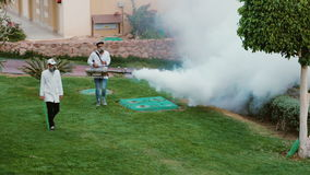 Sharm el Sheikh, Egypt, March, 2017: Fumigation of the garden. Destruction of parasites and harmful insects in the hotel. Fumigation of the garden. Two workers stock video