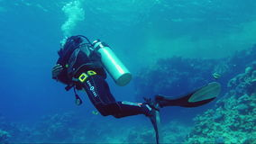 Sharm el Sheikh, Egypt, March, 2017: Professional diver soars in the water column, demonstrates the skill to maintain a stock video