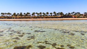 Sharm El Sheikh Egypt Royalty Free Stock Image
