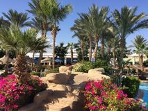Sharm El Sheikh, Egypt, Red Sea Stock Photos