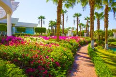 Sharm El Sheikh, Egypt - September 26, 2017: Buildings and Area Hotel Monter Carlo Resort Sharm El Sheikh. Sharm El Sheikh, Egypt - September 26, 2017: The main Royalty Free Stock Images