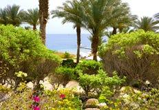 Sharm el Sheikh, Egypte - 11 avril 2017 : La plage et l'hôtel de secteur quatre Sharm el Sheikh de station de vacances de saisons Images stock