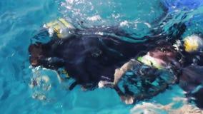 Sharm el-Sheikh, Egypte - December 6, 2016: de duikers in aqualong treffen om op de zeebedding te duiken voorbereidingen stock footage