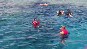 Sharm el-Sheikh, Egypte - December 6, 2016: de duikers in aqualong treffen te duiken voorbereidingen en snorkelend op de zeebeddi stock footage