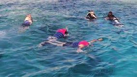 Sharm el-Sheikh, Egypte - December 6, 2016: de duikers in aqualong treffen te duiken voorbereidingen en snorkelend op de zeebeddi stock videobeelden