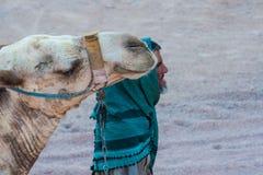 SHARM EL SHEIKH, EGYPTE - 9 JUILLET 2009 Le bédouin est un chameau dans le désert Image stock