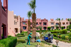 Sharm el Sheikh, Egypte, 28 Juli 2015: Tuinman die het tuinwerk doen Stock Foto's