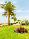 Sharm el Sheikh Egypten - April 12, 2017: Sikten av det lyxiga hotellet Barcelo Tiran Sharm 5 stjärnor på dagen med blå himmel Arkivbilder