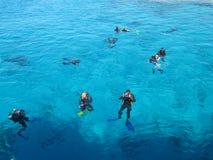 SHARM EL SHEIKH EGYPTEN - december 29, 2009: dykare simmar i Röda havet royaltyfria foton
